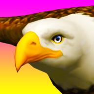 乘鹰(Eagle Ride)